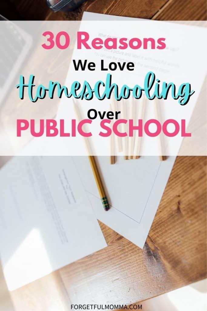30 Reasons We Love Homeschooling Over Public School