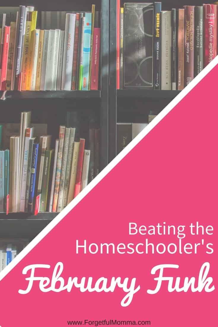 Beating the Homeschooler's February Funk