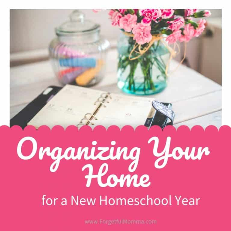 Organizing Your Home for A New Homeschool Year