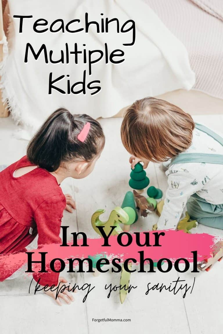 Homeschooling Multiple Kids with Ease