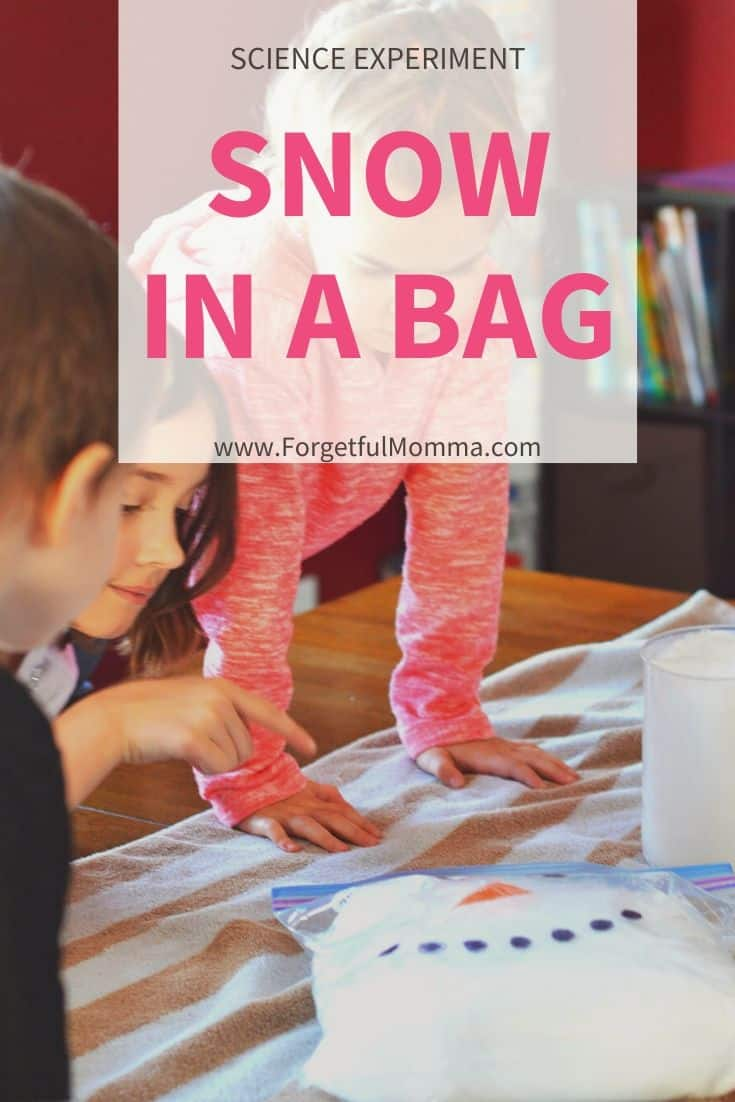 Snow Reaction in A Bag Science Experiment