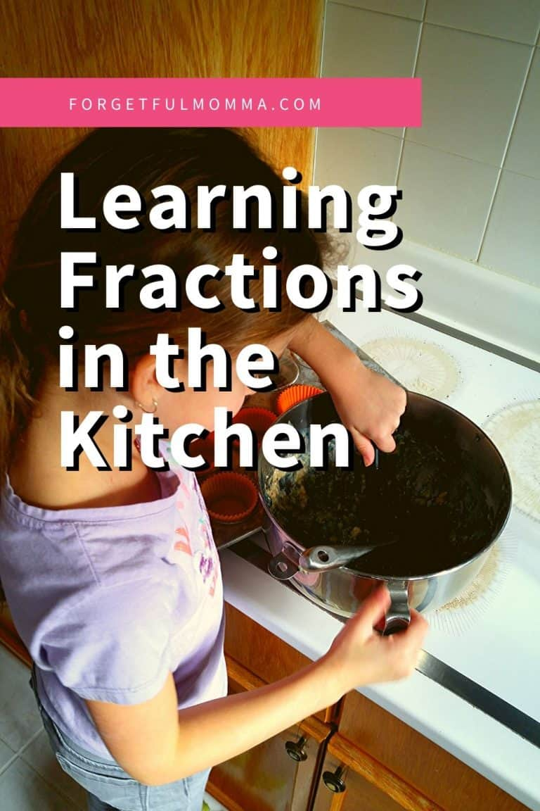 Learning Fractions in Our Homeschooling