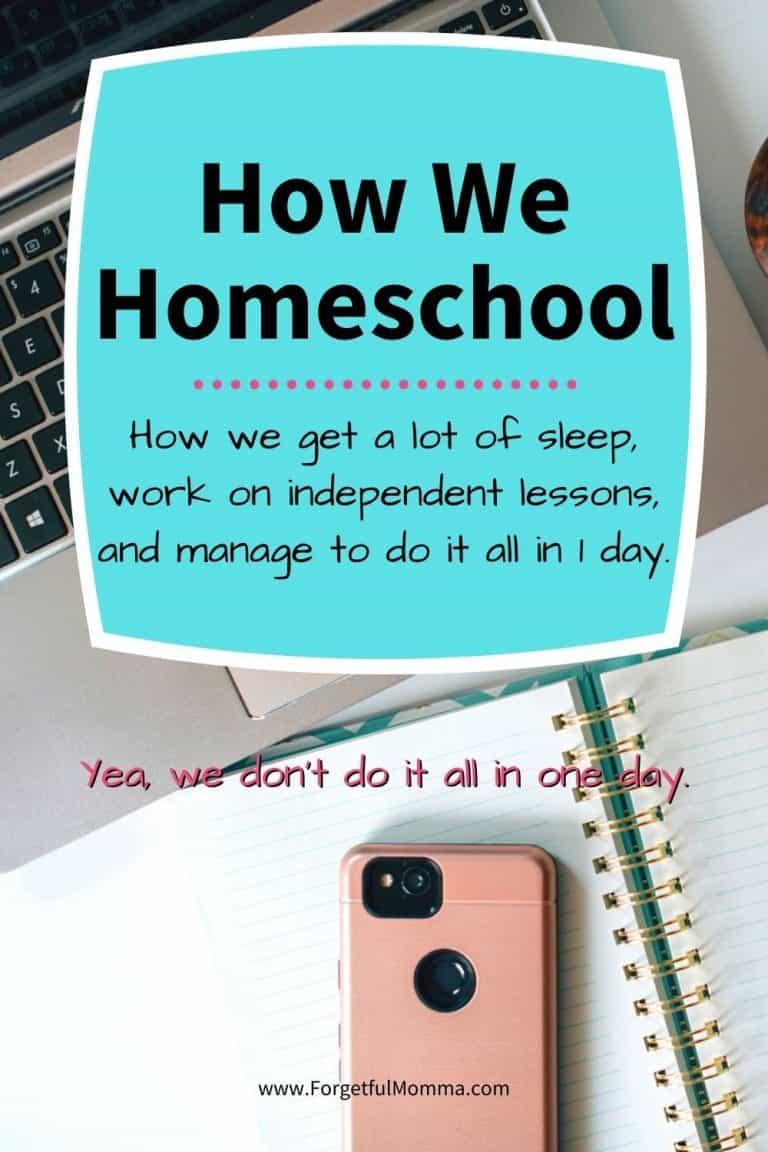How To Homeschool – How We Homeschool