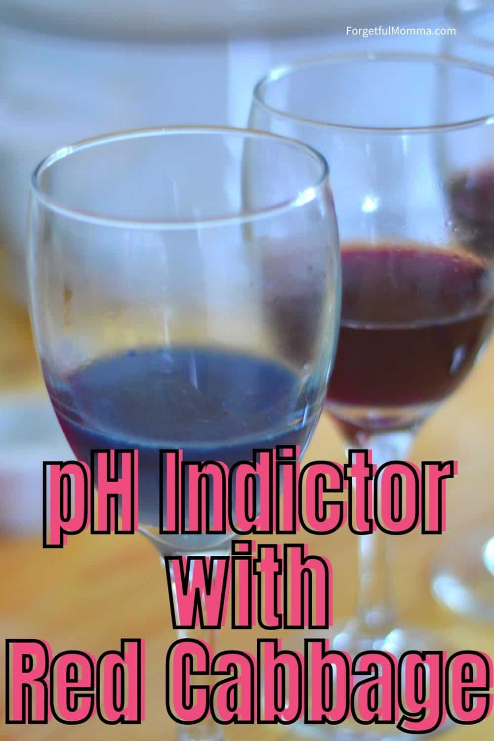 pH Indictor with Red Cabbage