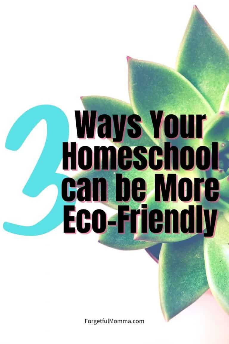Eco-Friendly Homeschooling – How To