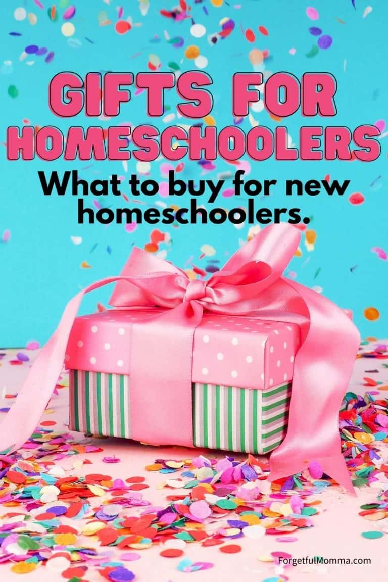 Gift Guide for Homeschoolers – What to Buy New Homeschoolers