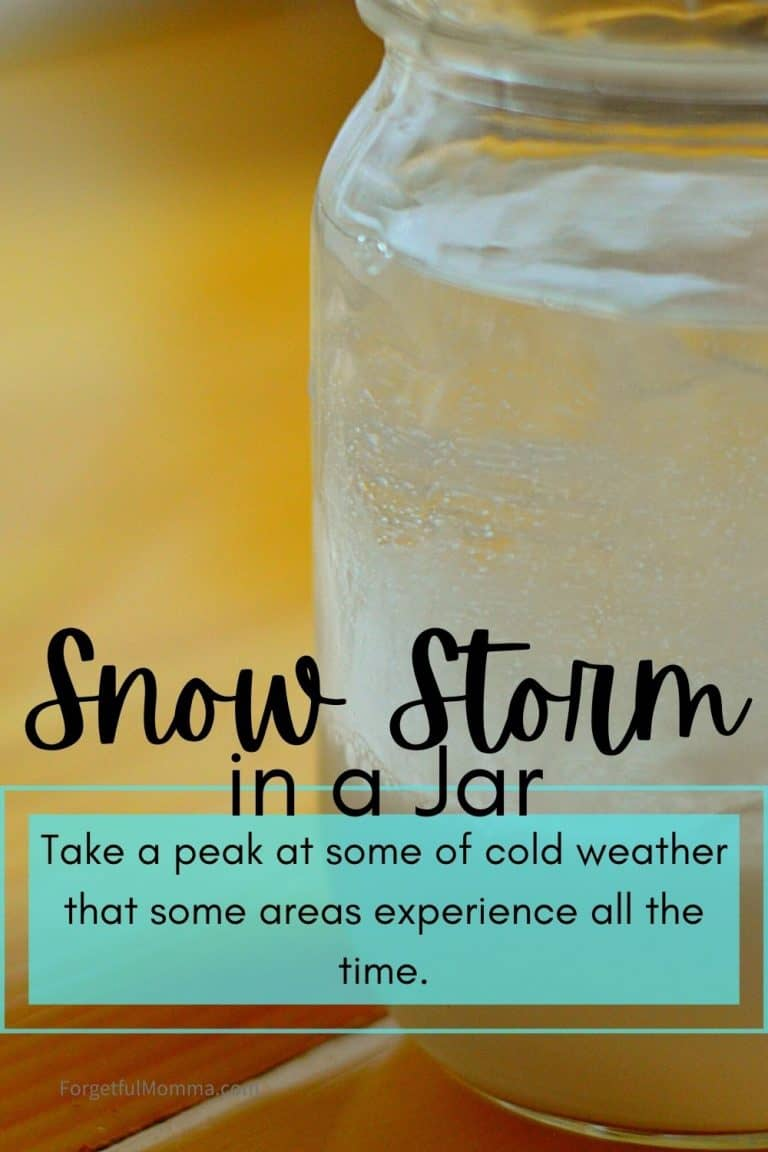 Snow Storm in A Jar Science Experiment