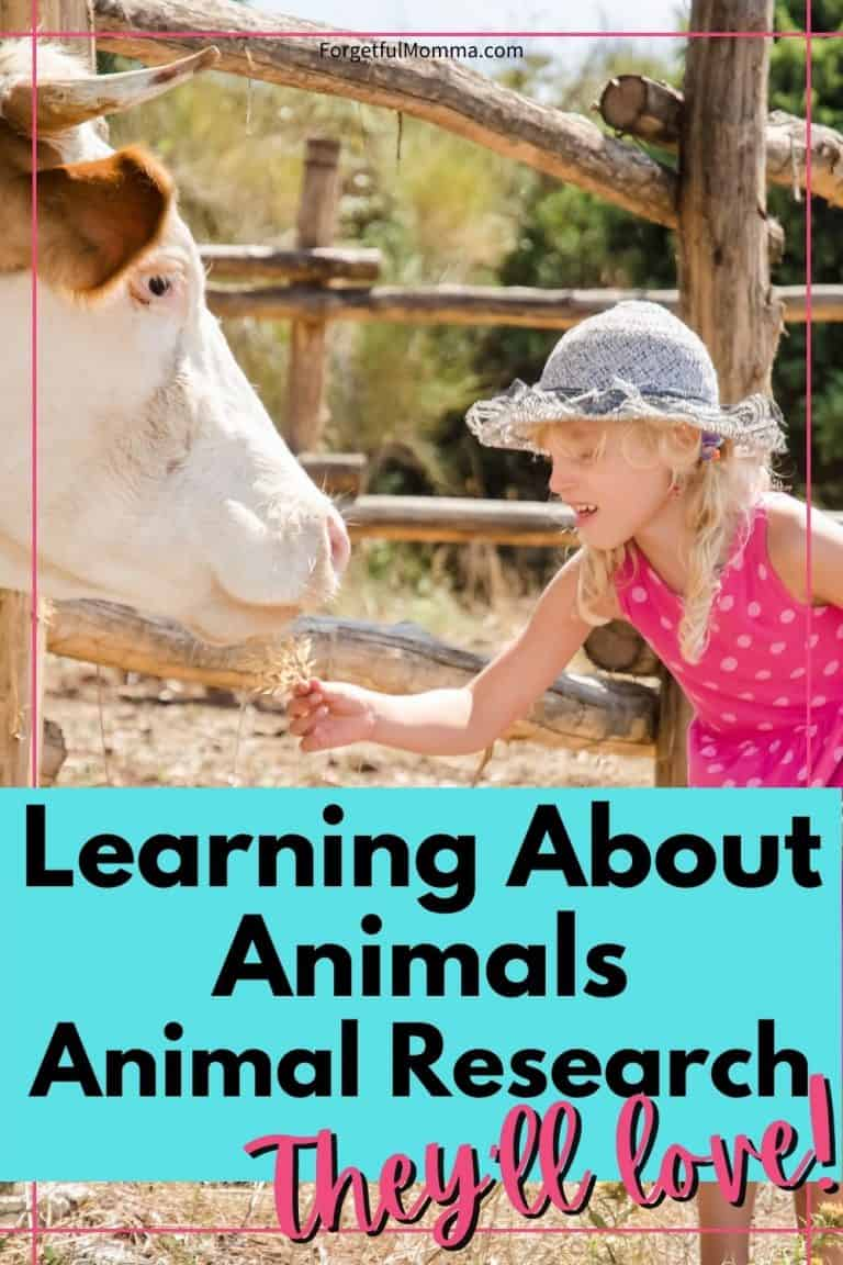 Learning About Animals – Animal Research