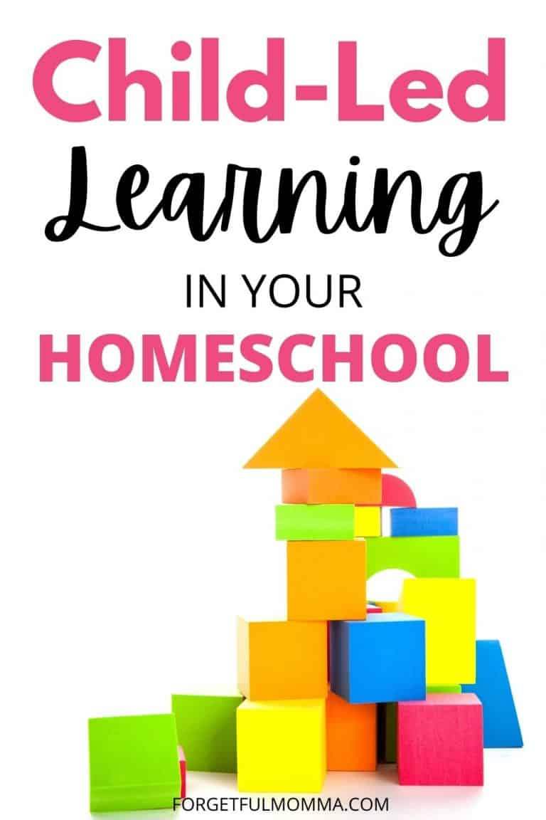 Child-Led Learning In Your Homeschool