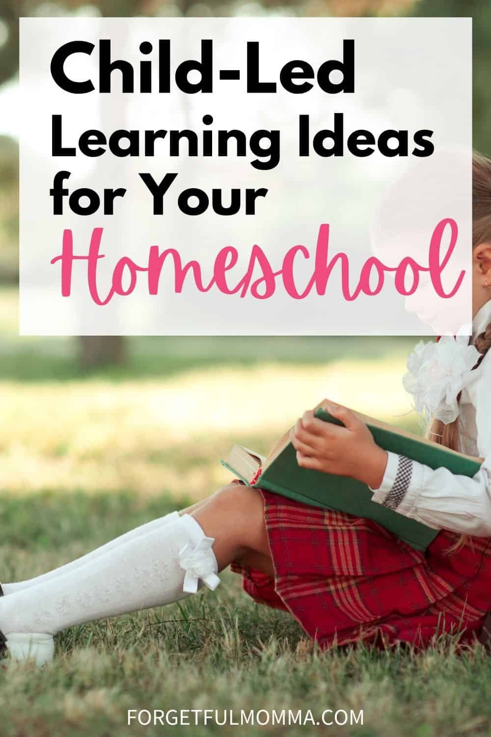 Child-Led Learning Ideas for your Homeschool