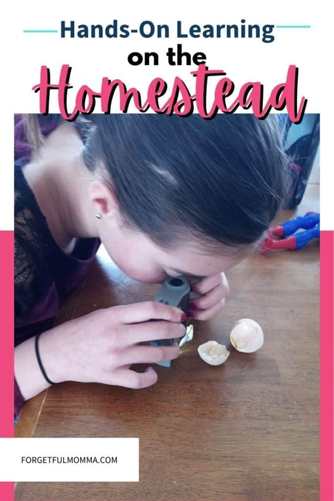 Hands-on Learning on the Homestead