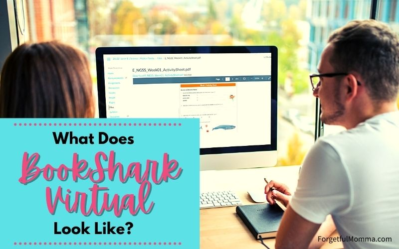 What does BookShark Virtual Look Like (1)